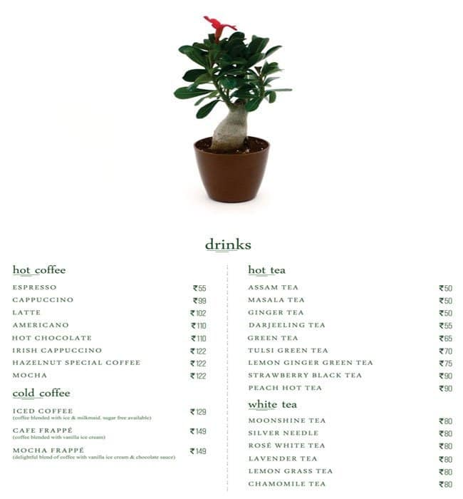 O The Plant Cafe Jaipur Menu