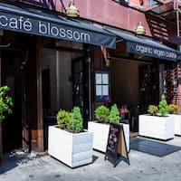 Cafe Blossom West Village Menu