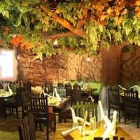 Rainforest Restaurant Kurla Menu
