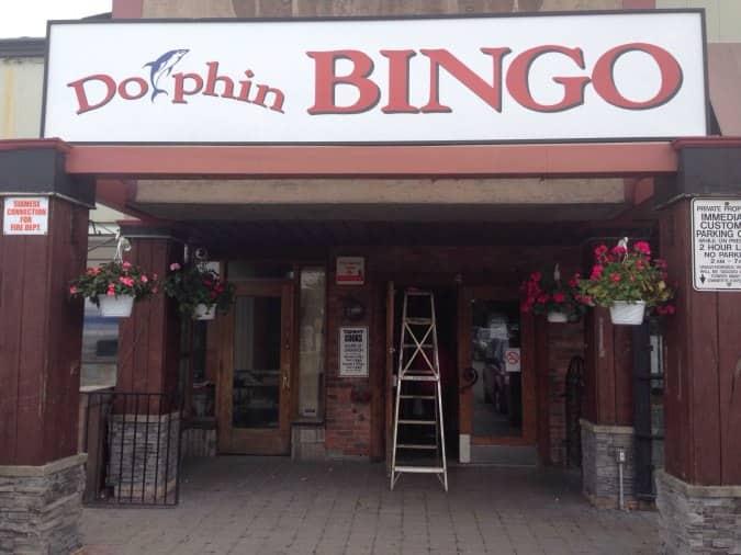 Dolphin Bingo