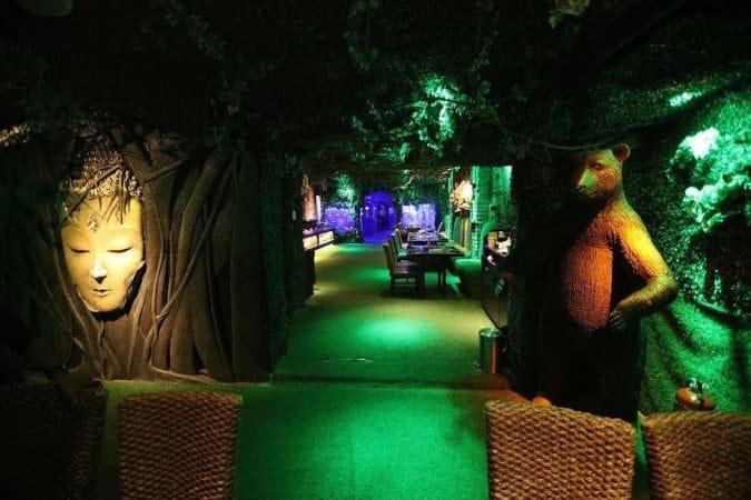 Events At Jungle Jamboree Connaught Place New Delhi Zomato
