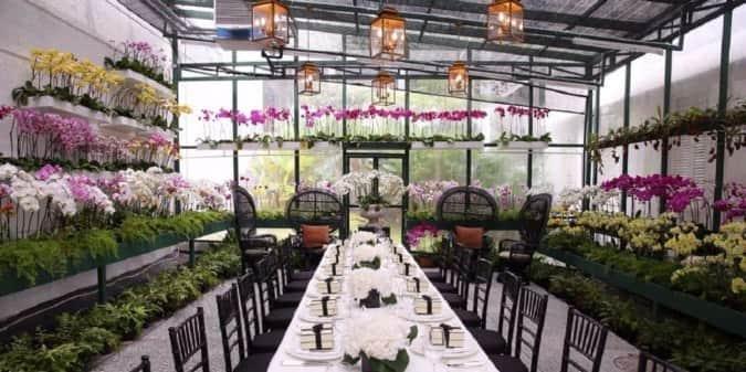 Average Cost Of Conservatory >> The Orchid Conservatory - The Majestic Hotel, Tasik Perdana, Kuala Lumpur - Zomato Malaysia