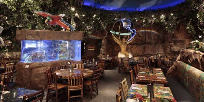 Rainforest Cafe, Schaumburg, Chicago - Urbanspoon/Zomato on science cafe, halloween cafe, corner bakery cafe, jungle cafe, zoo cafe, aquarium cafe, blue cafe, vegas cafe, sunrise cafe, sandella's flatbread cafe, hardrock cafe, animal cafe, first hard rock cafe, london cafe, new hard rock cafe, disney cafe, t-rex cafe, island cafe, space cafe, urbane cafe,