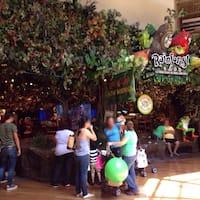 Grapevine Mills Rainforest Cafe Hours