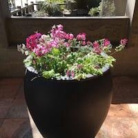 asian-garden-haymarket